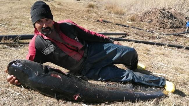 Burdur'un Gölhisar Gölü'nde ağa, rekor büyüklükte yayın balığı takıldı