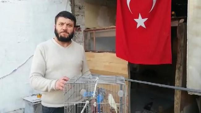 Bursa'da kafesinden kaçan muhabbet kuşları için itfaiye seferber oldu