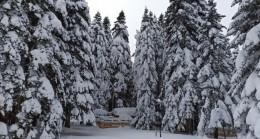 Bursa'da tahminler değişti, kar yağışı hafta sonuna kadar sürecek