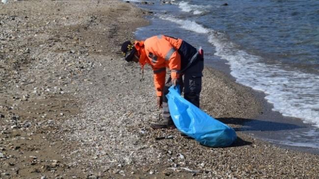 İzmir'de ölü balıklar kıyıya vurdu