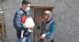 JASAT ekipleri koyunları çalınan şehit annesini mutlu etti
