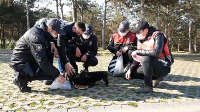 Polislerden can dostlarına yardım eli
