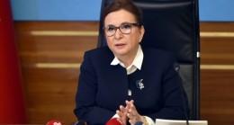 Ticaret Bakanı Pekcan ABD Ticaret Temsilcisi Katherine Tai ile görüştü