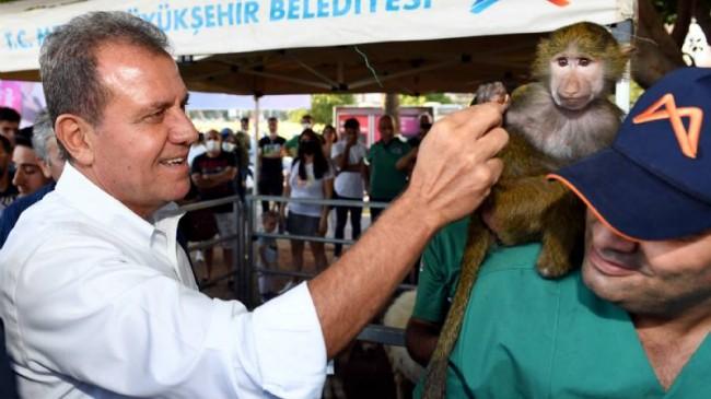 Mersin'deki Hayvanseverler Pati Fest'te Buluştu